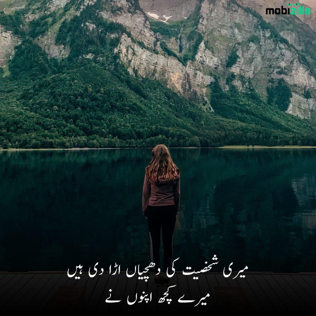 bewafa poetry in urdu 2 lines