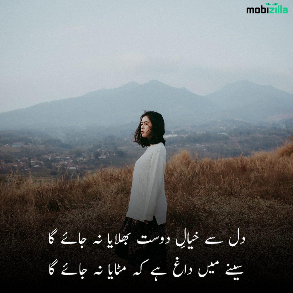 Dosti shayari, Dosti poetry
