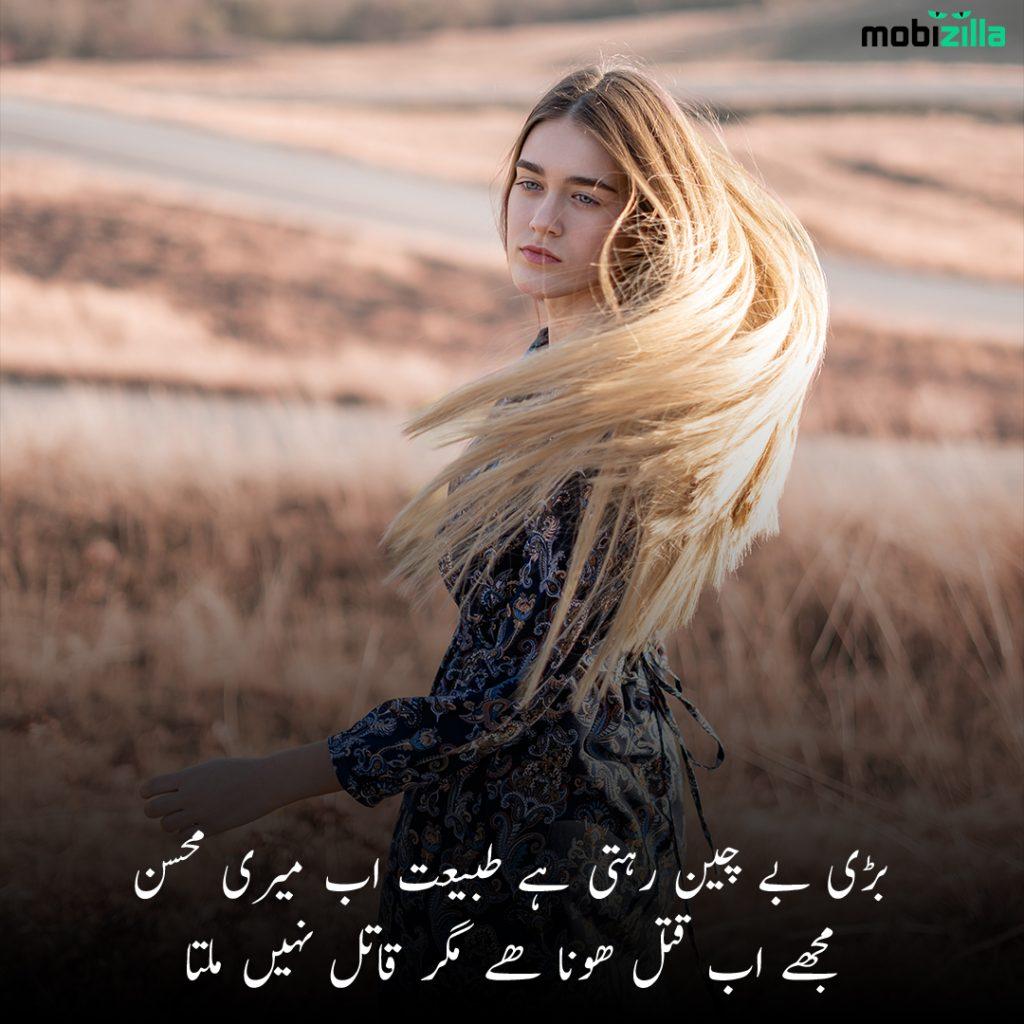 Urdu poetry on beauty