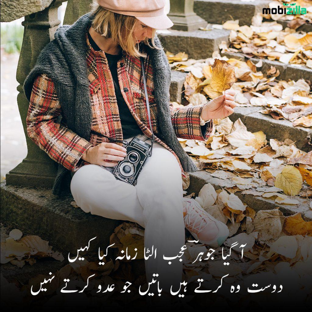 attitude friendship poetry in urdu